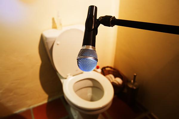 Noisy toilet in an Orlando home